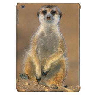 Centinela de Meerkat (Suricata Suricatta) en la Funda Para iPad Air