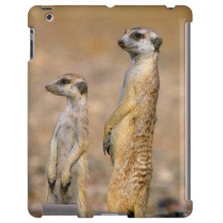 Centinelas de Meerkat (Suricata Suricatta), Karas Funda Para iPad