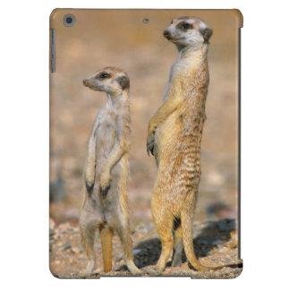 Centinelas de Meerkat (Suricata Suricatta), Karas Funda Para iPad Air