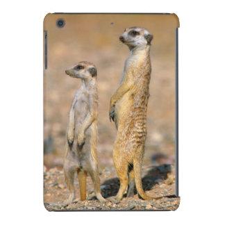 Centinelas de Meerkat (Suricata Suricatta), Karas Fundas De iPad Mini Retina