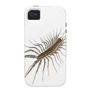 Centipede Vibe iPhone 4 Covers