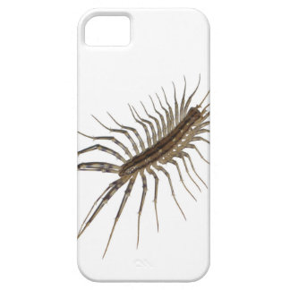 Centipede iPhone 5 Covers