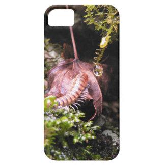 Centipede iPhone / iPad case