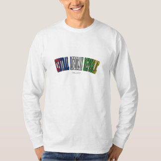 Central African Republic in national flag colors T Shirt