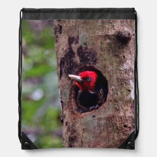 Central America, Costa Rica, Manuel Antonio Drawstring Bag