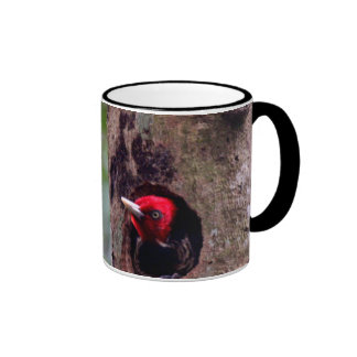 Central America, Costa Rica, Manuel Antonio Ringer Mug