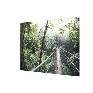 Central America, Costa Rica, Monteverde Cloud Canvas Print
