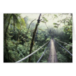 Central America, Costa Rica, Monteverde Cloud Card