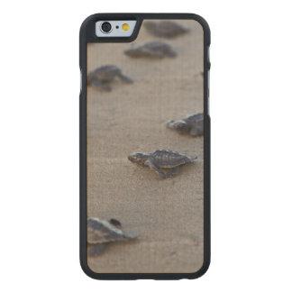 Central America, El Salvador, Pacific Ocean Carved® Maple iPhone 6 Slim Case