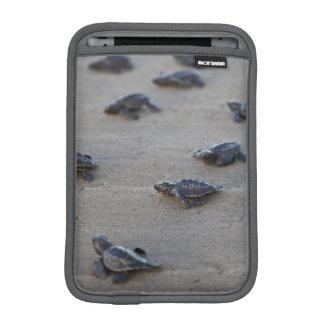 Central America, El Salvador, Pacific Ocean Sleeve For iPad Mini