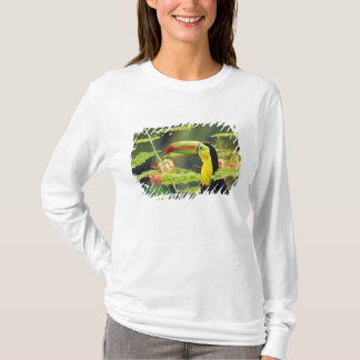 Central America, Honduras. Keel-billed Toucan T-Shirt