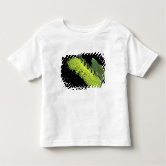 Central America, Panama, Barro Colorado Island. 4 Toddler T-shirt