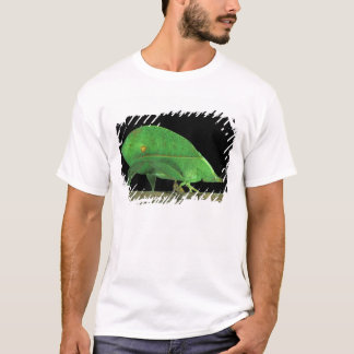 Central America, Panama, Barro Colorado Island. 5 T-Shirt