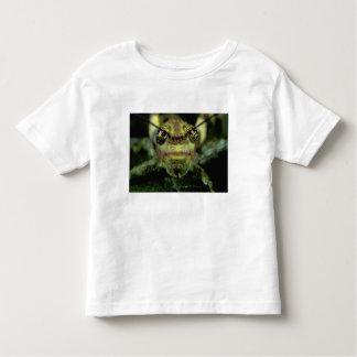 Central America, Panama, Barro Colorado Island. 6 Toddler T-shirt