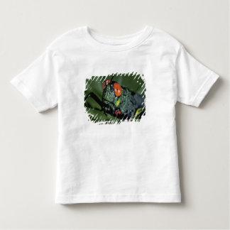 Central America, Panama, Barro Colorado Island. 7 Toddler T-shirt