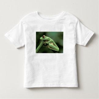 Central America, Panama, Barro Colorado Island, Toddler T-shirt