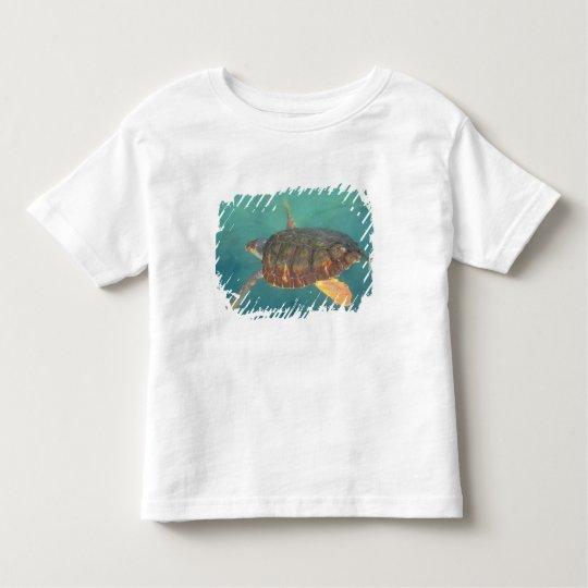 Central America, Panama, Bocas Del Torro Toddler T-shirt