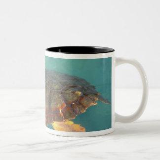 Central America, Panama, Bocas Del Torro Two-Tone Coffee Mug
