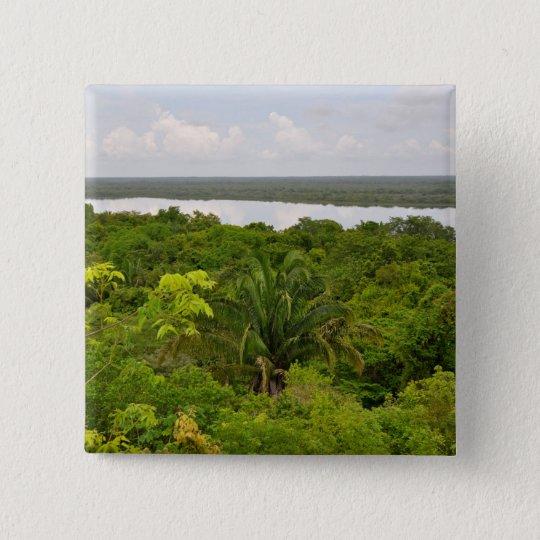 Central America Rain Forest in Belize Button