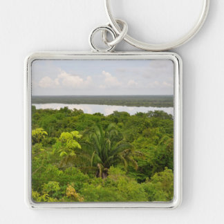 Central America Rain Forest in Belize Keychain