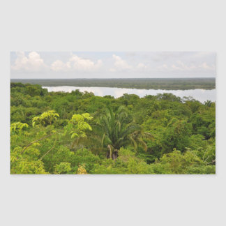 Central America Rain Forest in Belize Rectangular Sticker