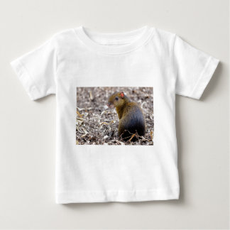 Central American Agouti Baby T-Shirt