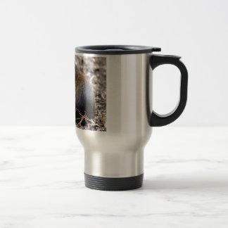 Central American Agouti Travel Mug