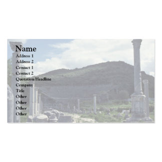 Central American Ruins Double-Sided Standard Business Cards (Pack Of 100)