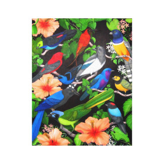 Central American Wild Birds Wrapped Canvas