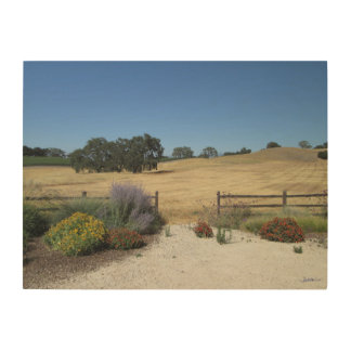 Central Coast California Vineyard Ranch Wood Print