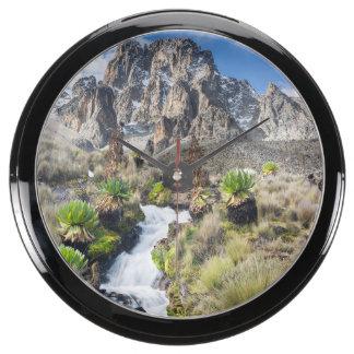 Central Mount Kenya National Park Fish Tank Clocks