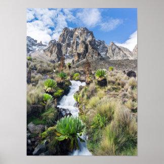 Central Mount Kenya National Park Poster