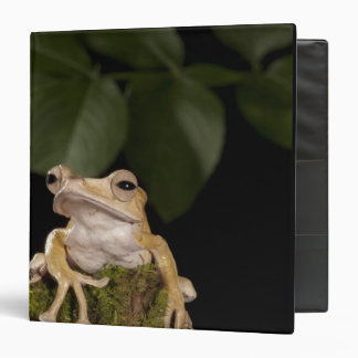 Central PA, USA,. Borneo Eared Frog; Vinyl Binder