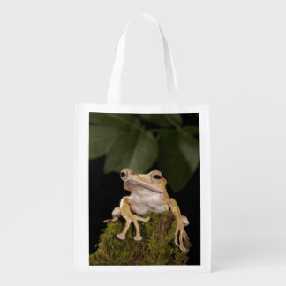 Central PA, USA,. Borneo Eared Frog; Reusable Grocery Bag