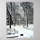 Central park 2010 Snow - CIMG6446 Posters