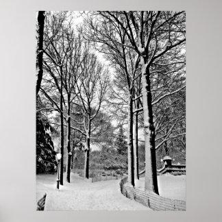 Central park 2010 Snow - CIMG6447-a Poster