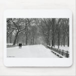 Central Park Alfombrilla De Ratones