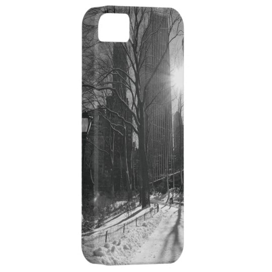 Central Park and Manhattan Skyline, New York City iPhone SE/5/5s Case