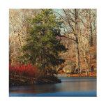 Central Park Autumn Landscape Photo Wood Canvas