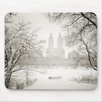 Central Park - Beautiful Winter Snow Mouse Pad