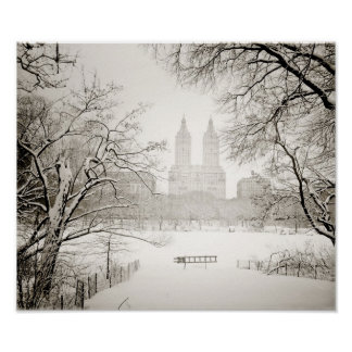 Central Park - Beautiful Winter Snow Posters