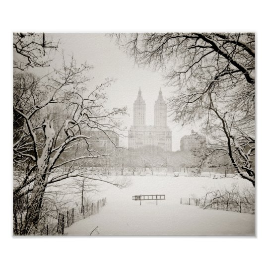 Central Park - Beautiful Winter Snow Poster