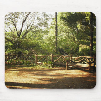 Central Park Bench Summer New York City Mouse Pads