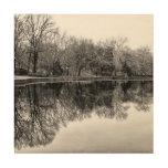 Central Park Black and White Landscape Photo Wood Prints