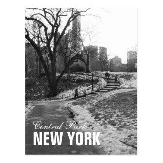 Central Park blanco negro Nueva York Tarjeta Postal