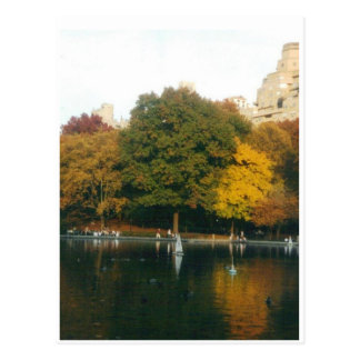 Central Park Boat Pond in Autumn Postcard