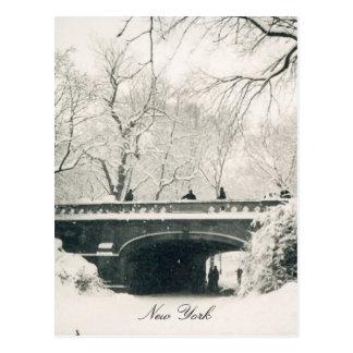 central park bridge postcard