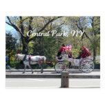 Central Park, caballo y carro Tarjeta Postal