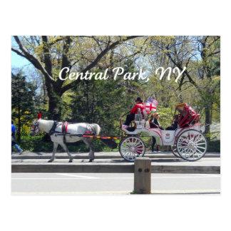 Central Park caballo y carro Tarjeta Postal