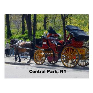 Central Park caballo y carro Tarjetas Postales